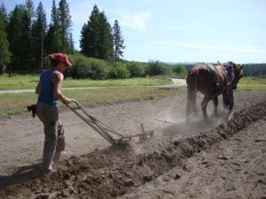 plowing_field